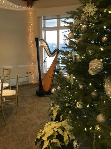 Kalamazoo Wedding Harpist