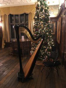 Iowa Harp Musician