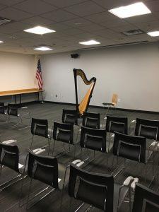 Detroit Concert Harpist