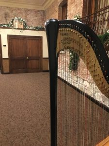 West Chicago Wedding Harpist