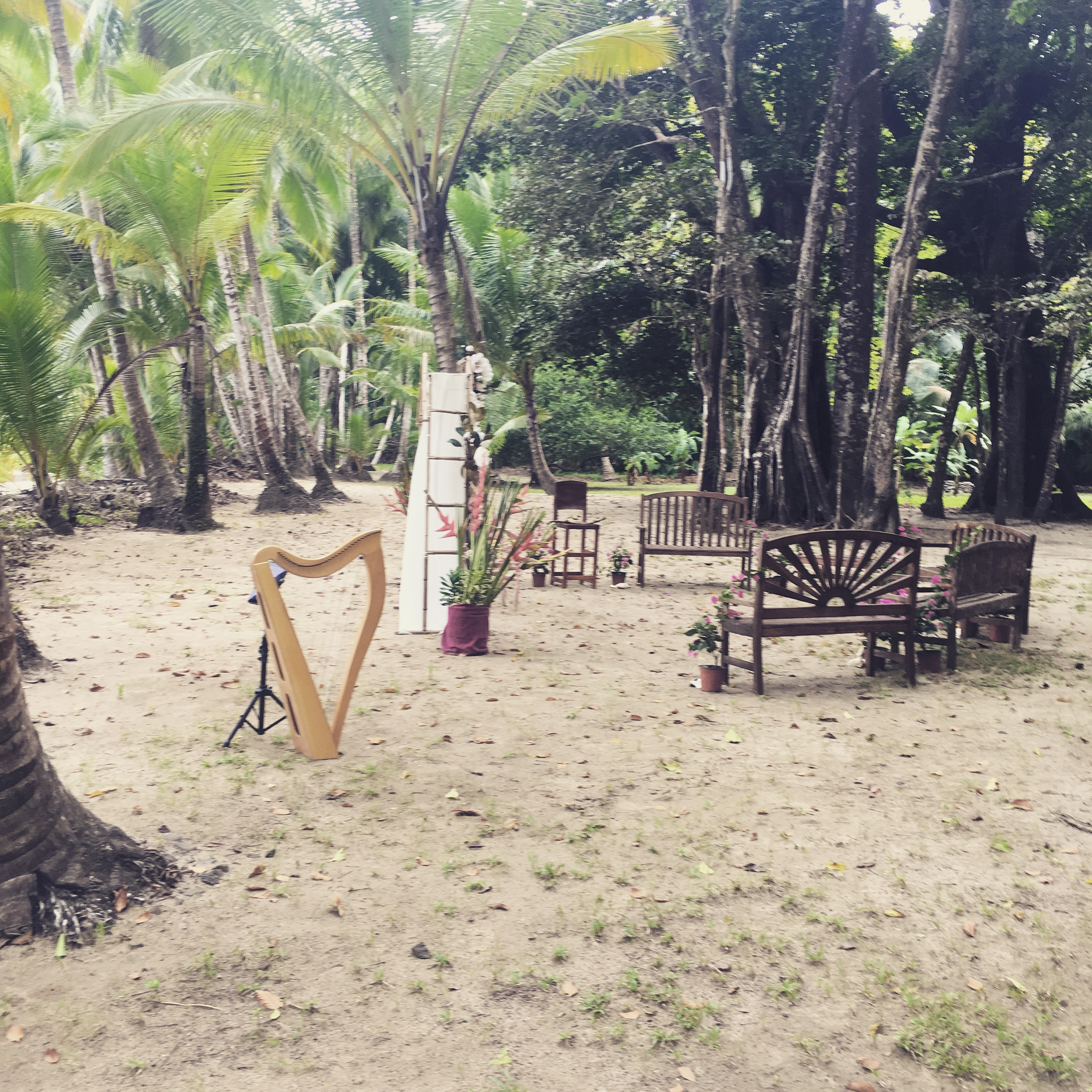 Wedding Harpist in Panama