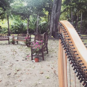 Panama Harpist for Weddings
