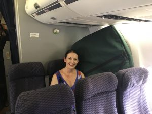Traveling Harpist on an Airplane