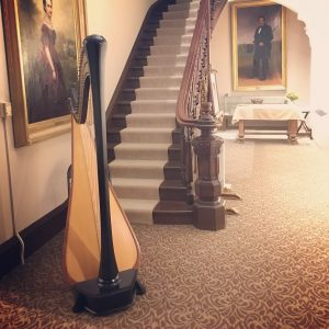 Central Illinois Harpist