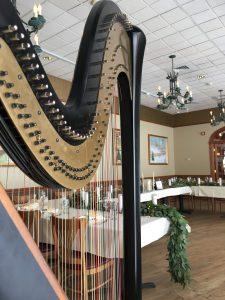 Chicago Harpist