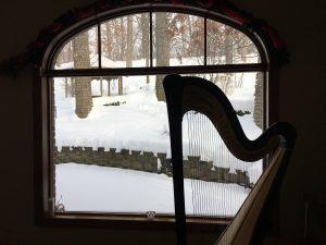 Wedding Harpist in Chicago