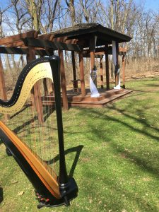 Harpist in Northern Illinois