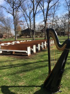 Rockford Harpist for Weddings