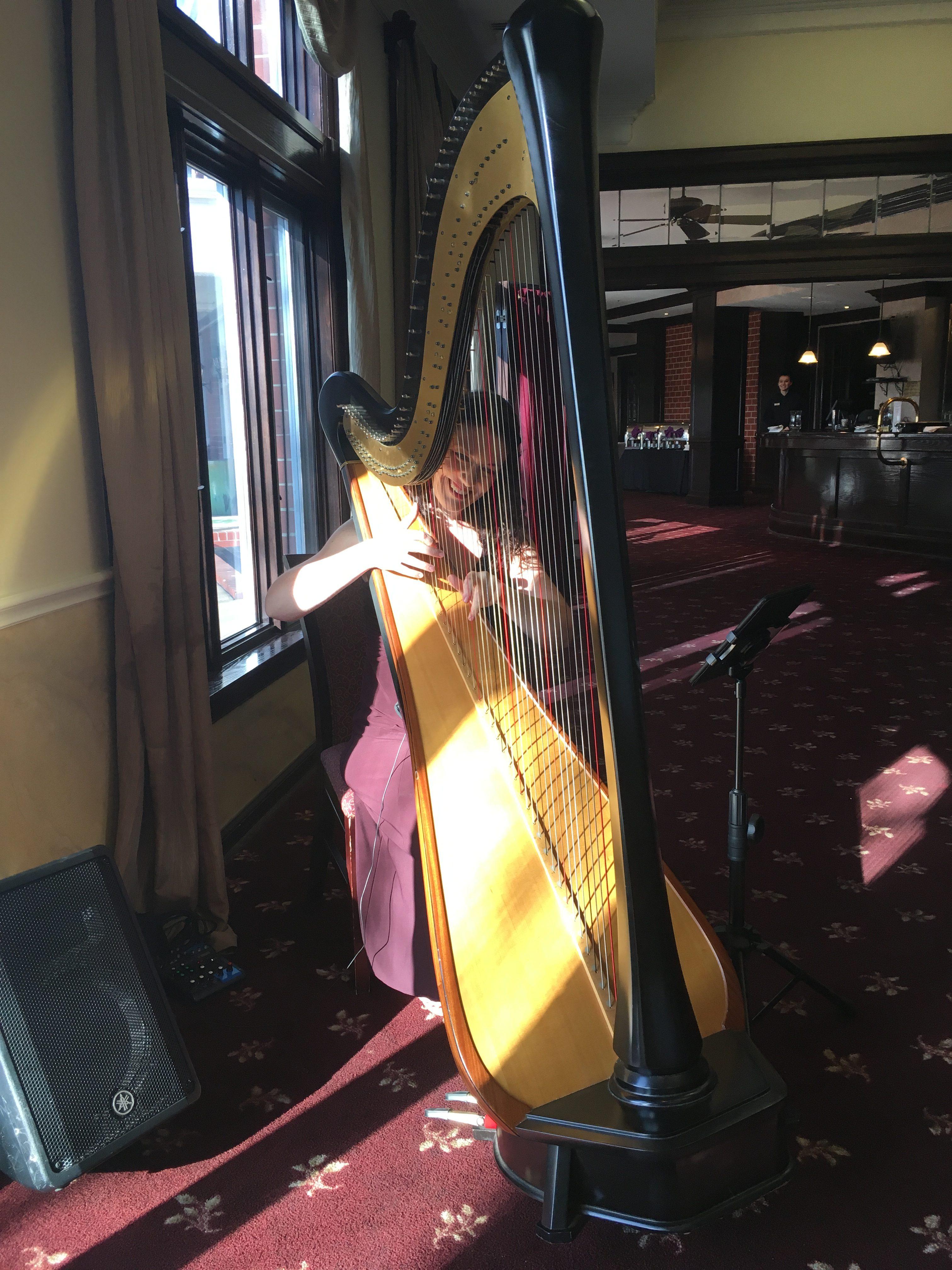 Springfield IL Harpist