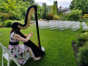 Harpist in Northwest Indiana