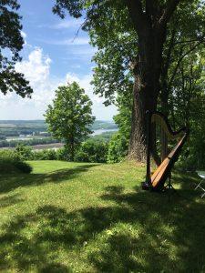 Harpist in Galena IL
