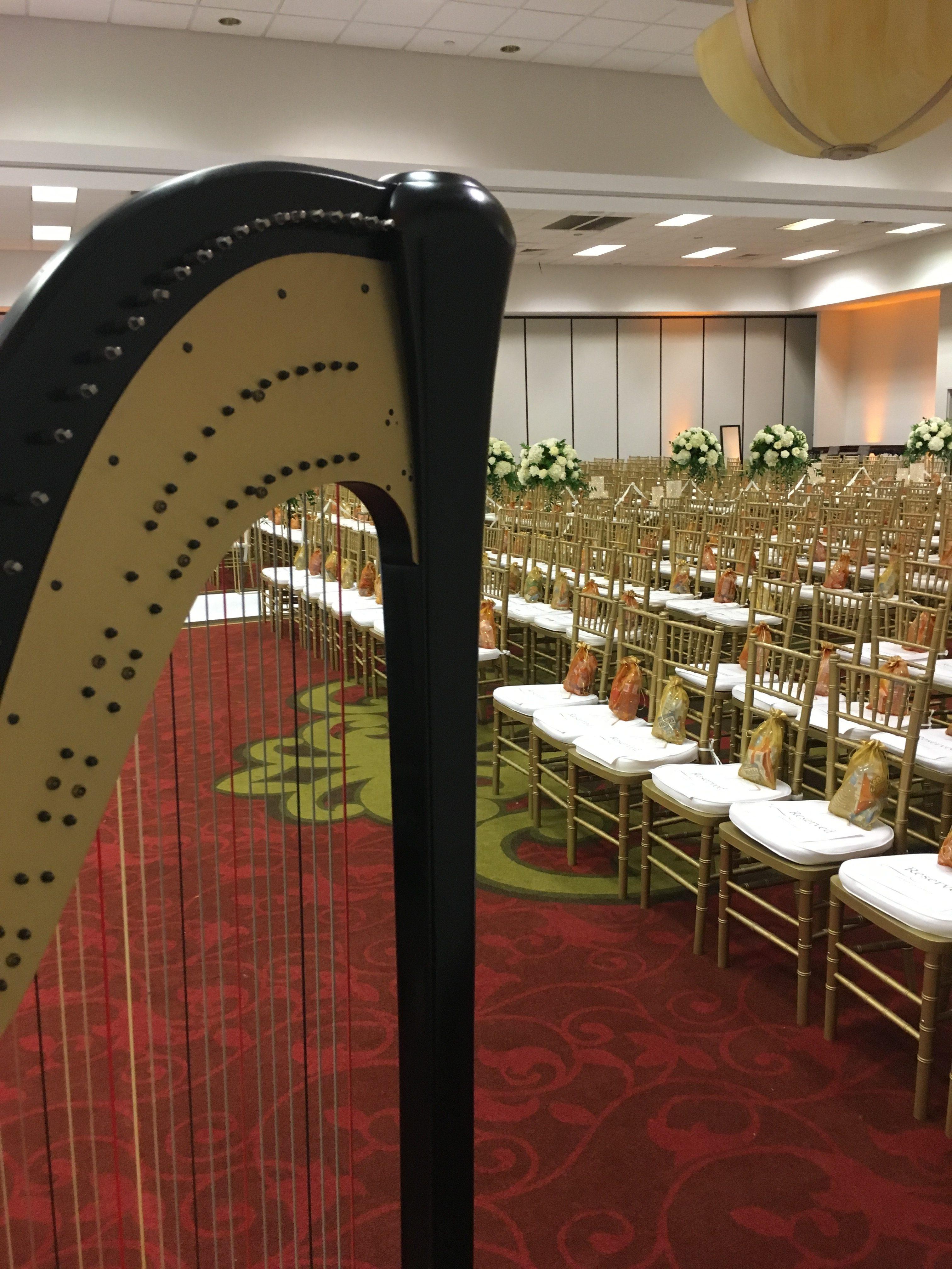 Des Moines Harpist for Weddings