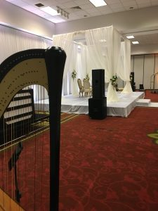 Harp Music for Indian Weddings