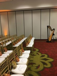 Bollywood Harp Music for Indian Weddings