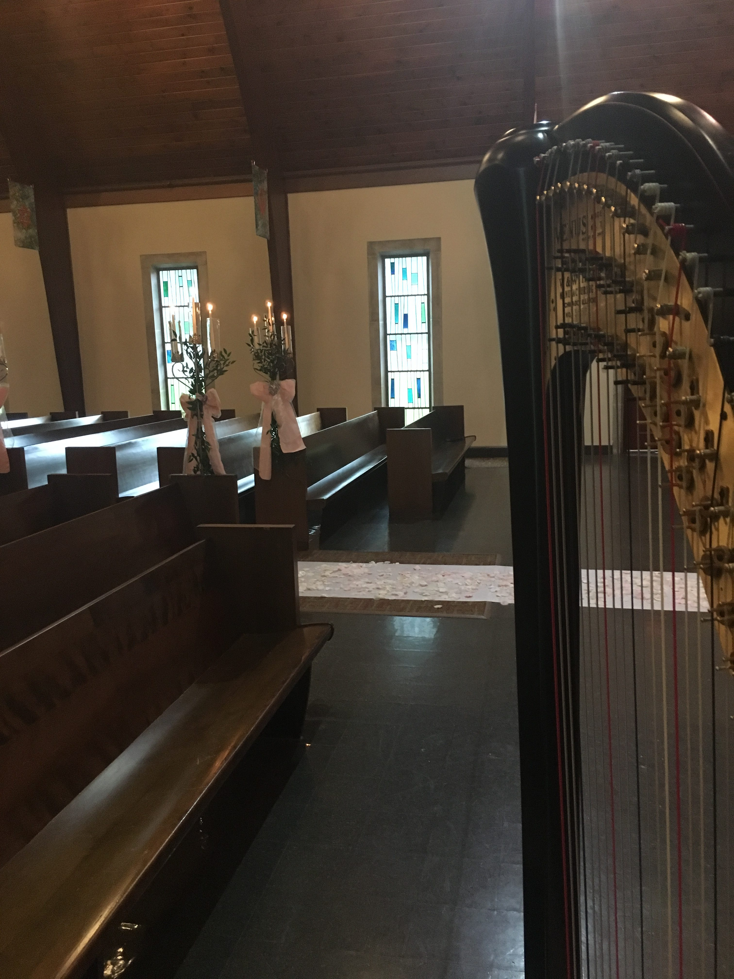 Harpist Southern Indiana