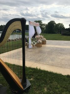 Youngstown Ohio Harpist