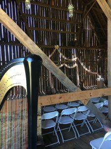 Marinette WI Harpist
