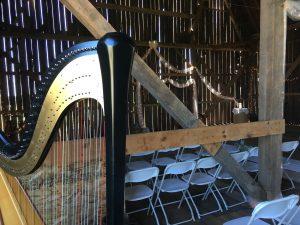 Green Bay Harpist