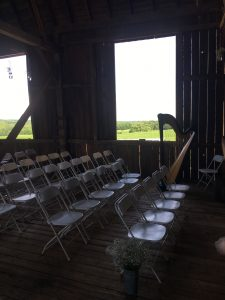 Wisconsin Wedding Harpist