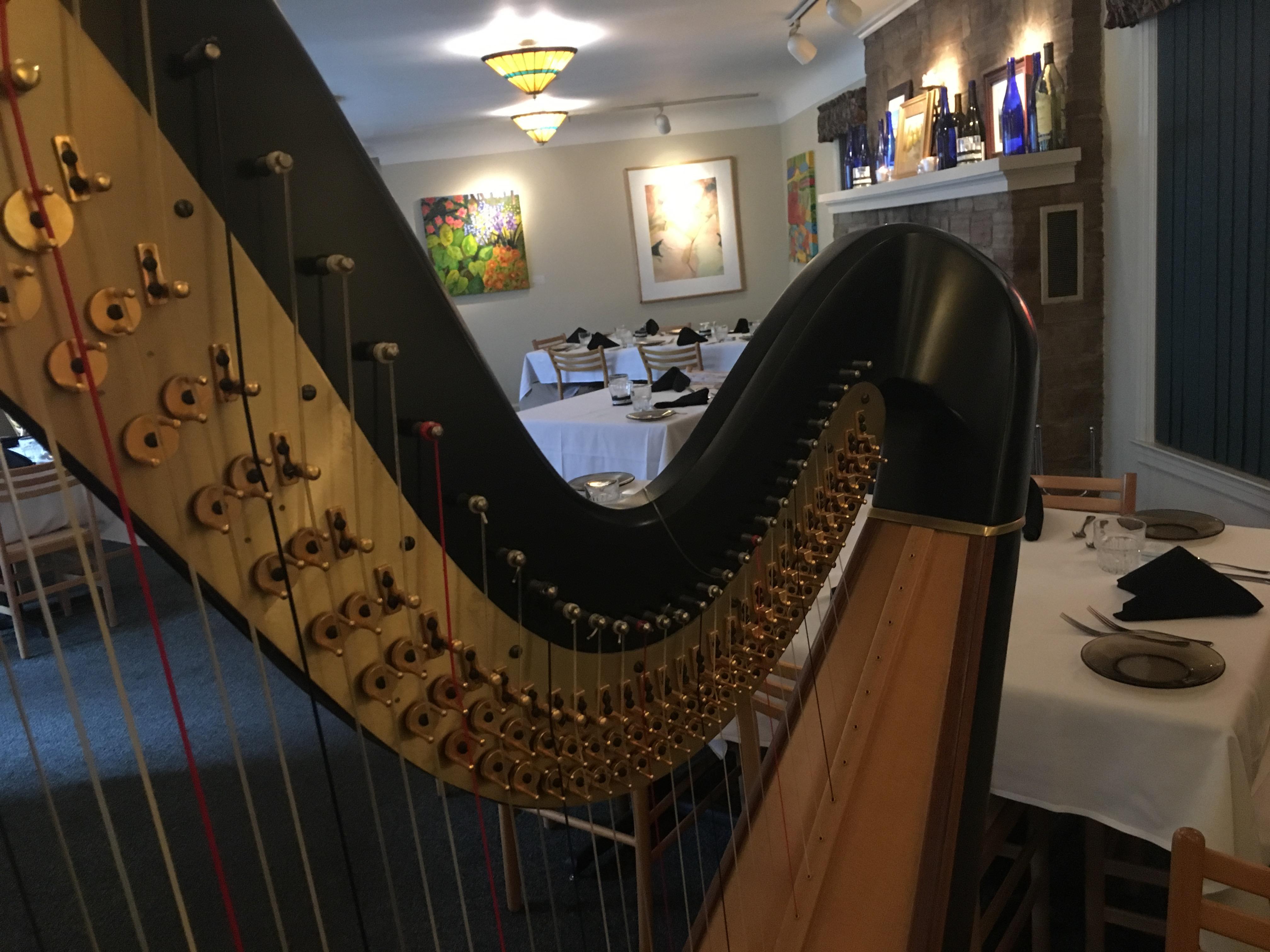 Harp Player Stevens Point