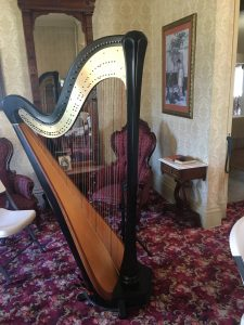 Waterloo Iowa Harpist