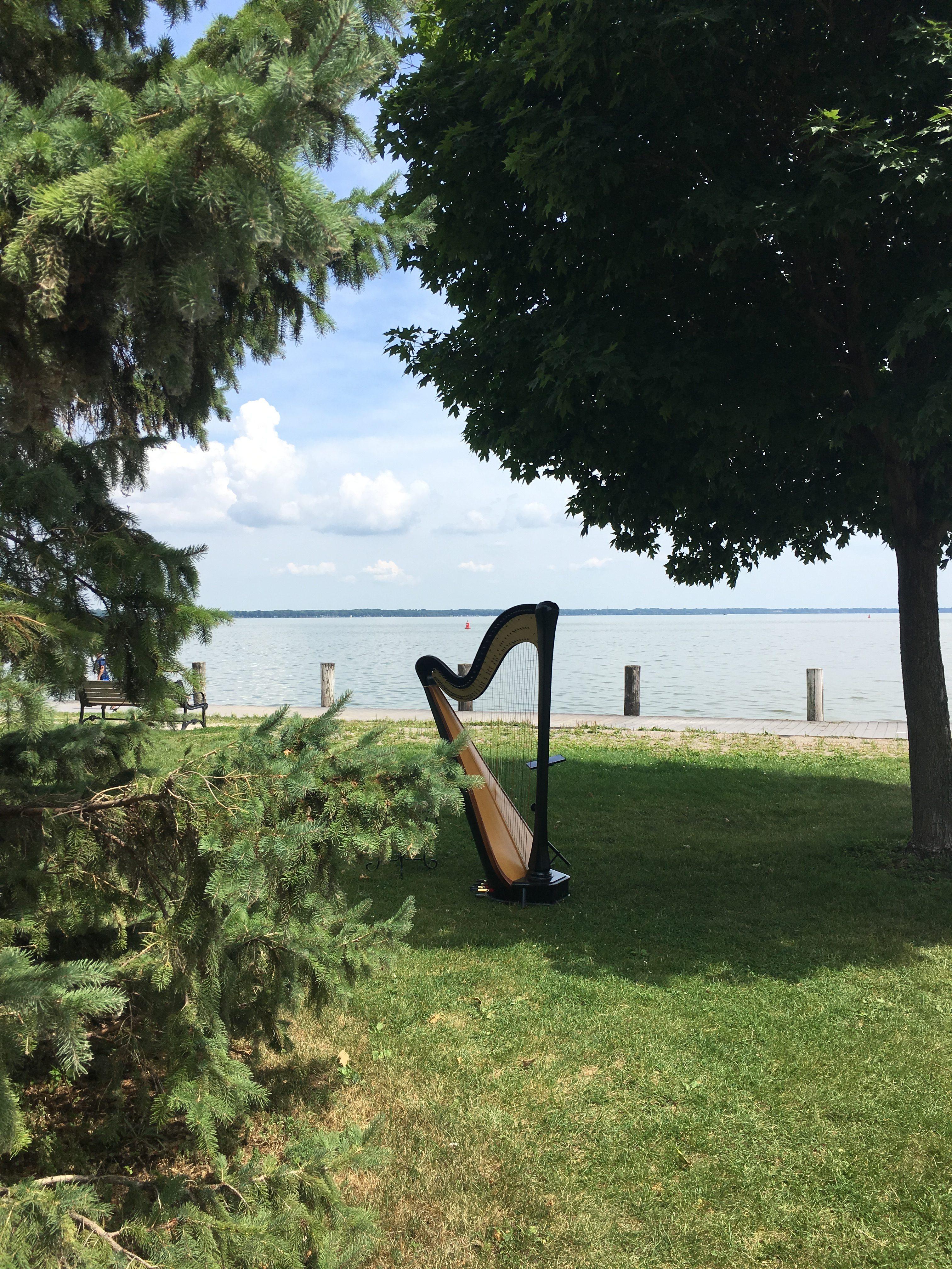 Harpist in Appleton WI