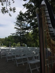 Iowa City Wedding Harpist