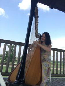 Central Illinois Harpist