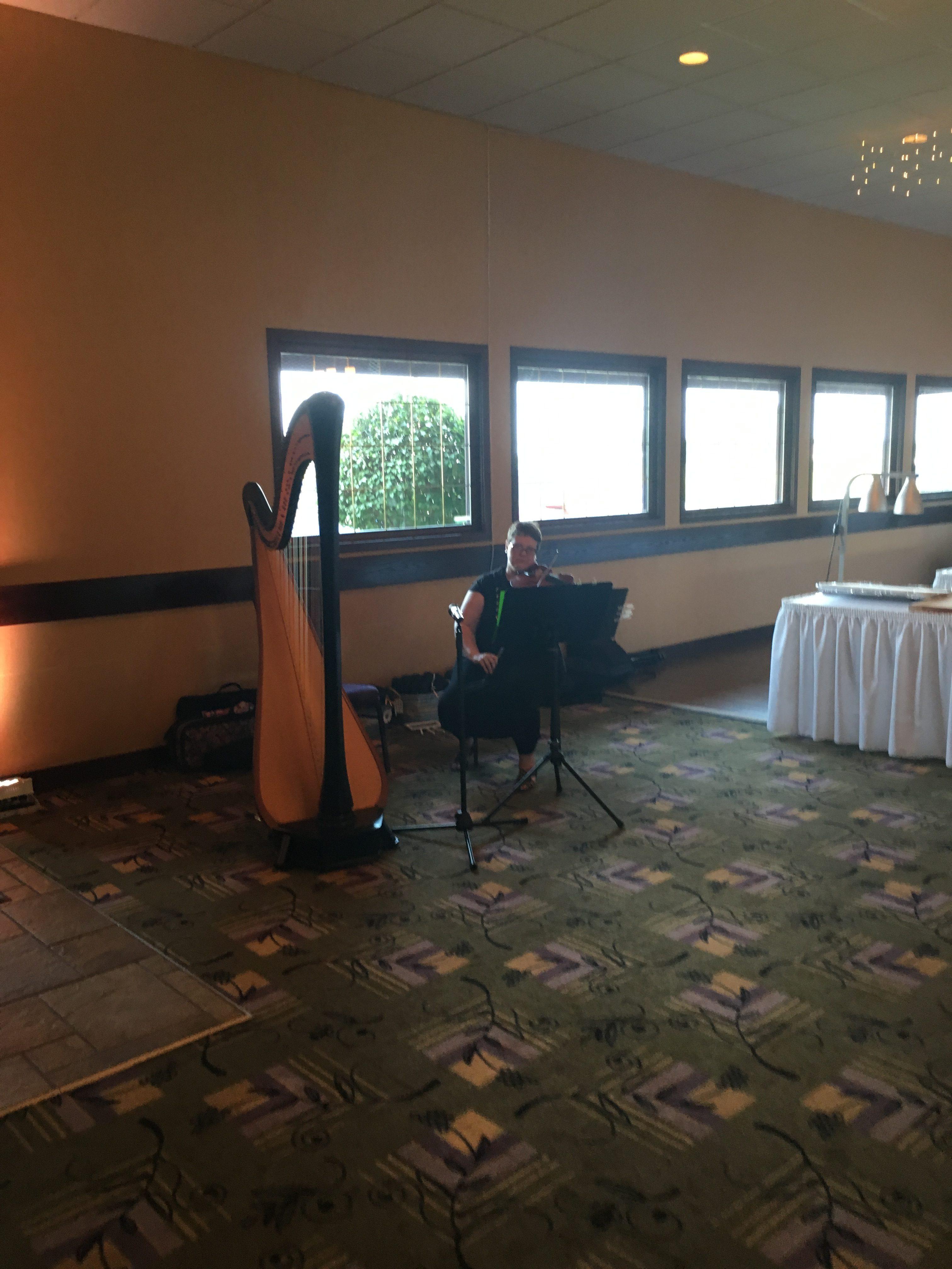 Quad Cities Wedding Reception Music | The Classic Harpist
