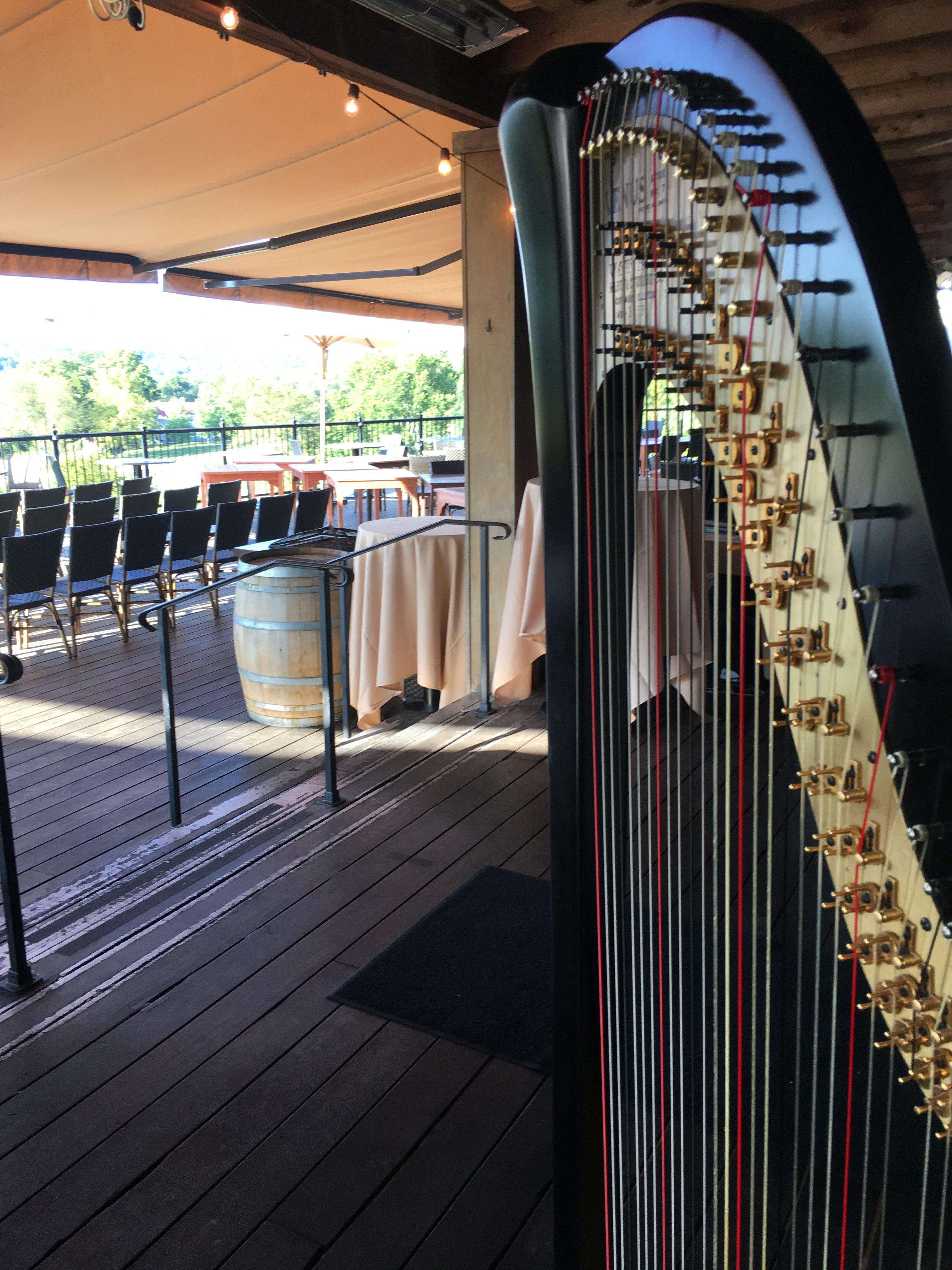 Harpist in St. Louis