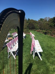 Wheaton Harpist for Weddings