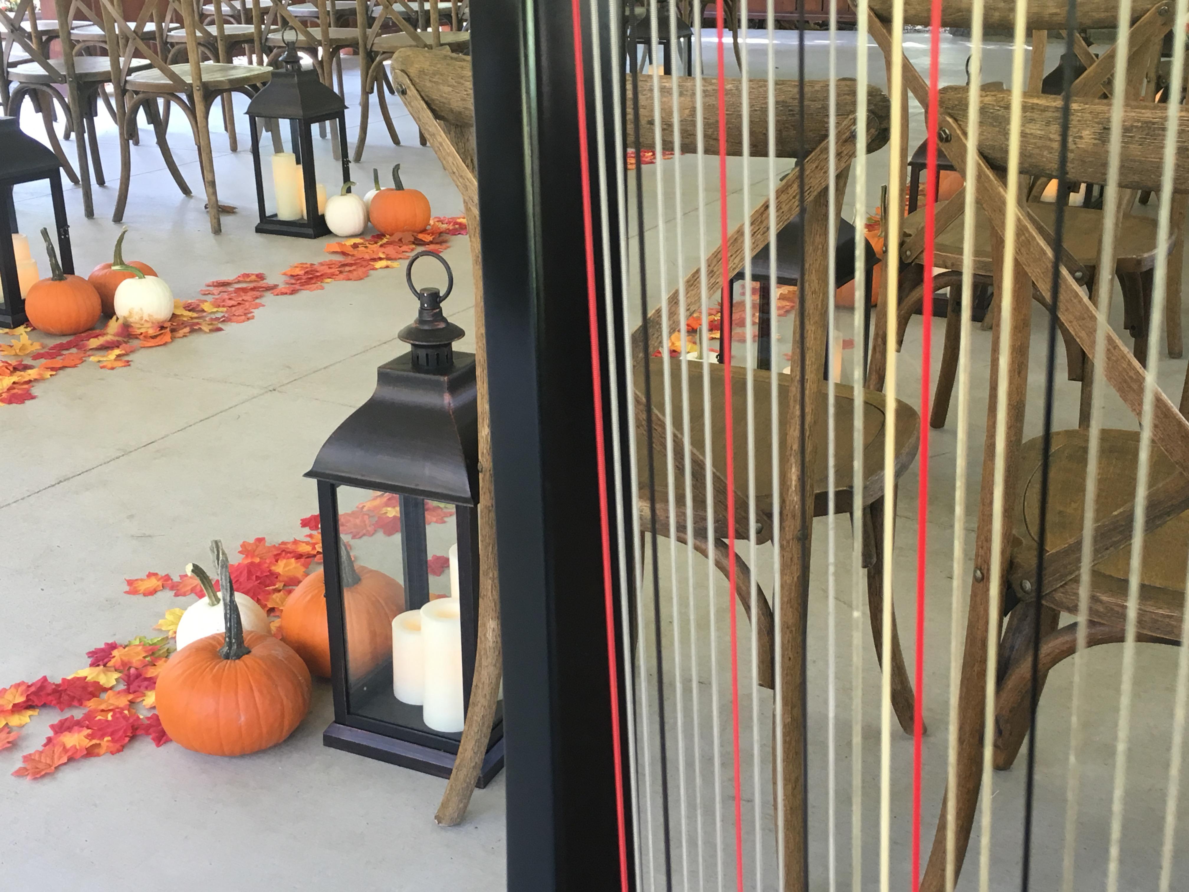 Fall Wedding Music Harp Indiana