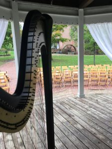 NWI Wedding Harpist