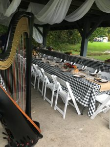 Wedding Reception Live Music Indiana