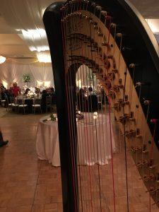 Chicago Wedding Harp Player