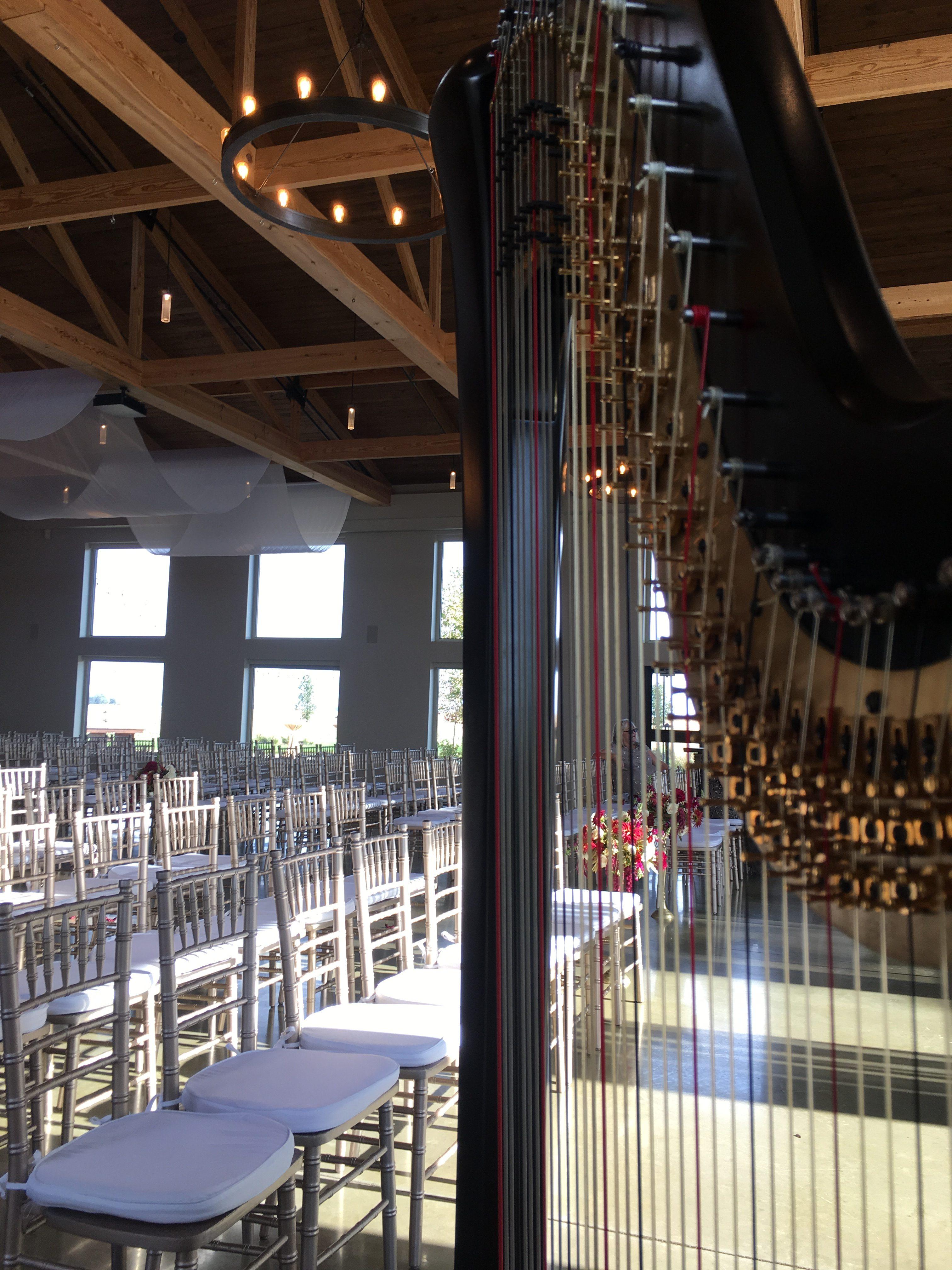 Champaign-Urbana Harpist