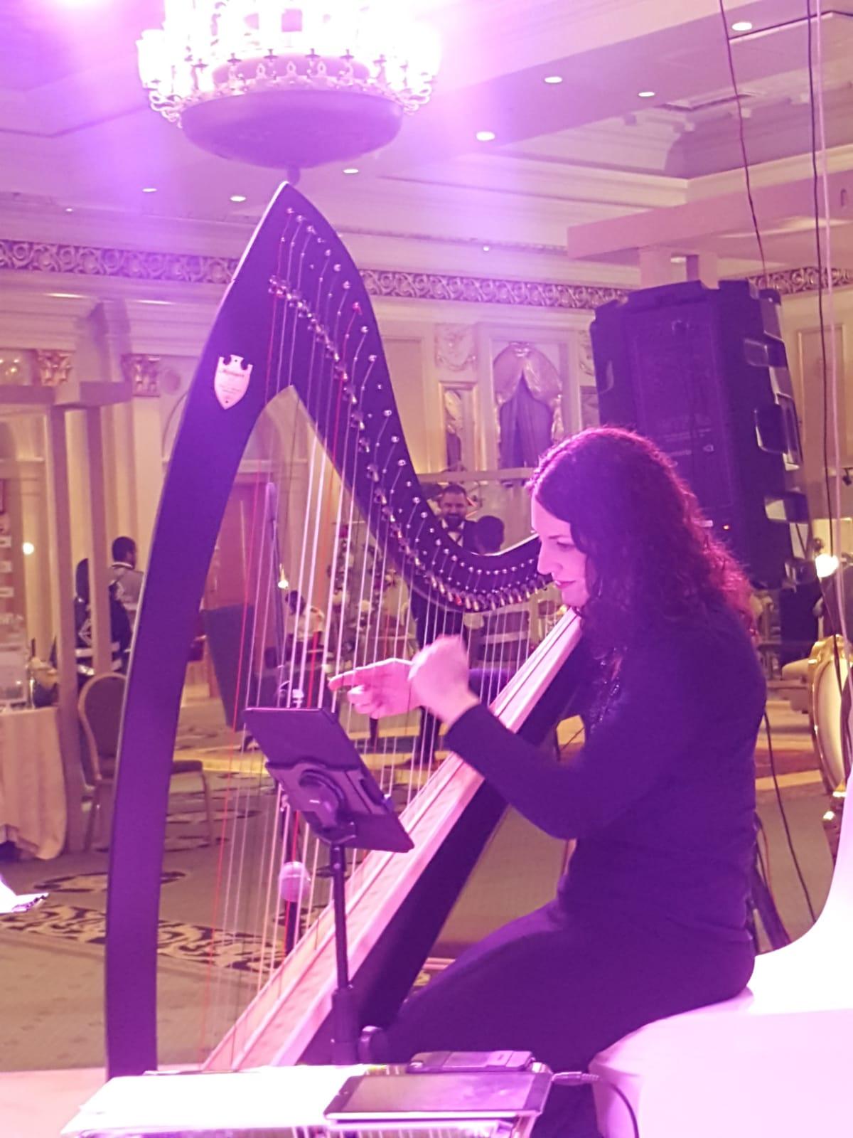 Saudi Arabia Harpist Dammam