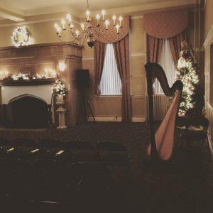 Wedding Harpist Central IL