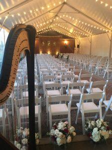 West Tennessee Harpist