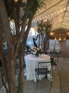 Elegant Wedding Music Memphis