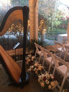 Harp Player in Memphis