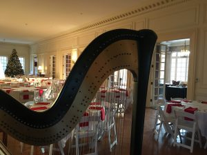 Harp Music for Christmas Parties
