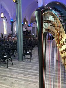 Southern Illinois Harp Player