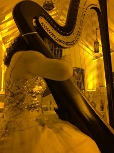 Northern Illinois Wedding Harpist