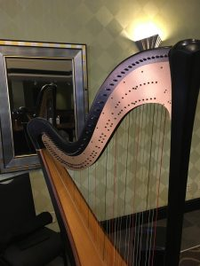Springfield Wedding Harpist