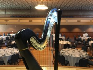 Decorah Iowa Harpist