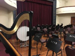 Harp in an Orchestra