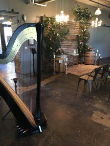 Southwest Michigan Harpist