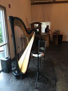 Indianapolis Harpist