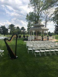 Northern Indiana Wedding Harpist